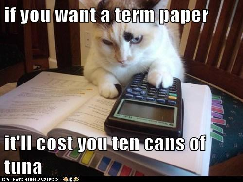 if you want a term paper  it'll cost you ten cans of tuna