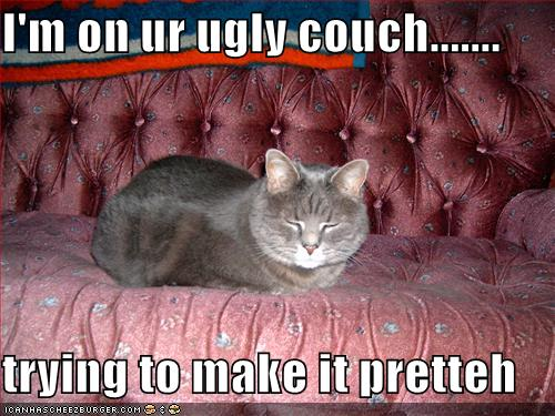 I'm on ur ugly couch.......  trying to make it pretteh