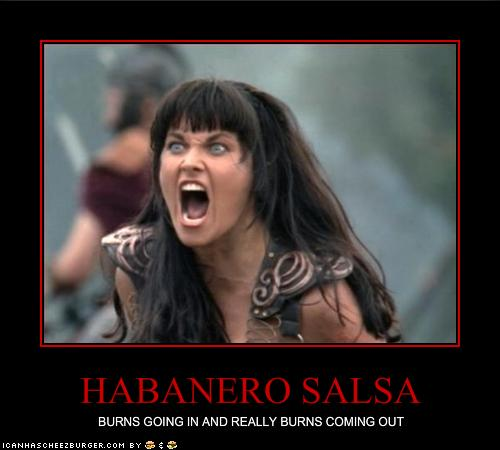 Salsa Sauce Funny