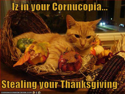 Iz in your Cornucopia...  Stealing your Thanksgiving