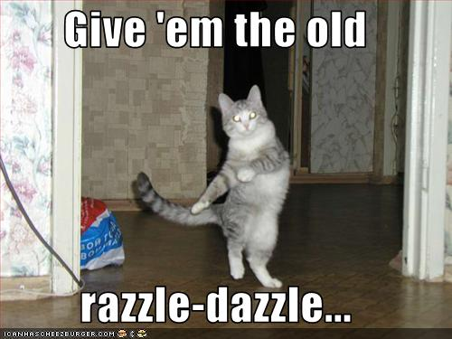 razzle dazzle lolcat
