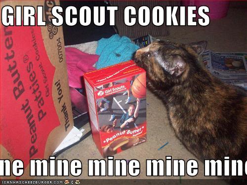 cookies mine