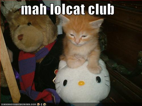 lol cat club