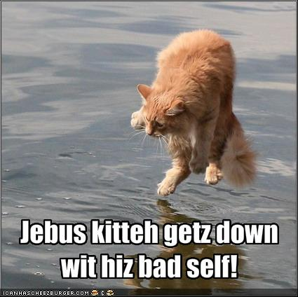 Jebus kitteh getz down wit hiz bad self!