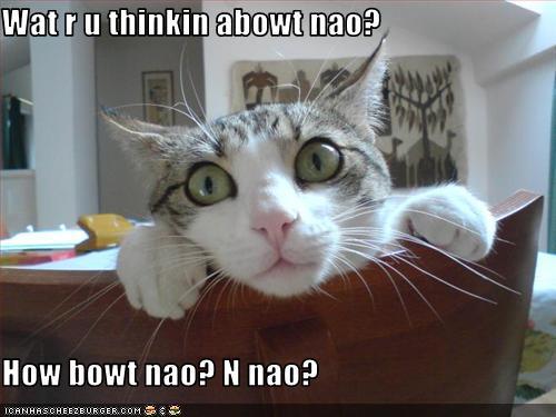Wat r u thinkin abowt nao?  How bowt nao? N nao?