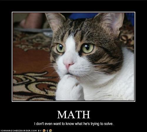 lol cat math