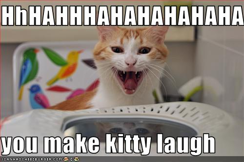 kitty laugh 