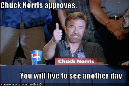 chuck norris approves this post