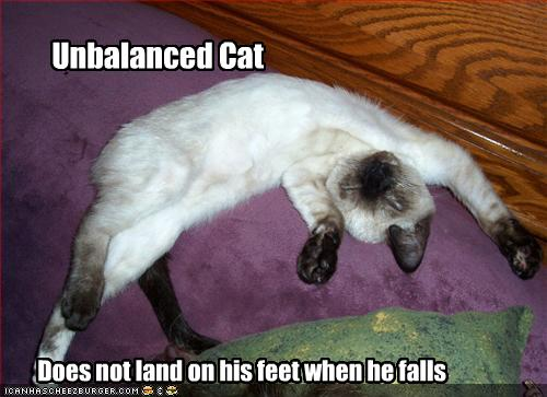 Unbalanced Cat