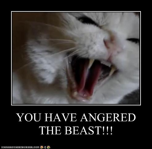 YOU HAVE ANGERED THE BEAST!!!