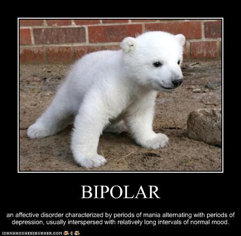 Bipolar Funny Pics
