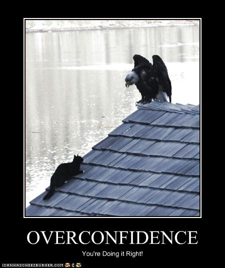 Overconfidence Cat Eagle