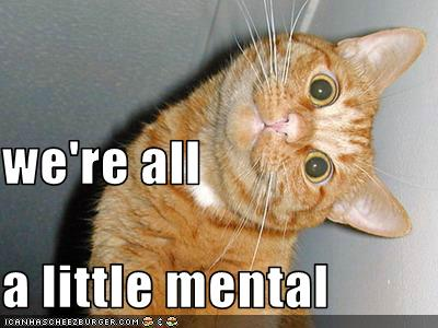 we re all a little mental kitteh