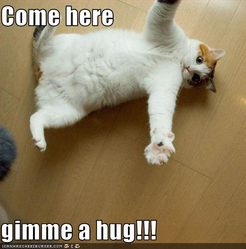 gimme a hug