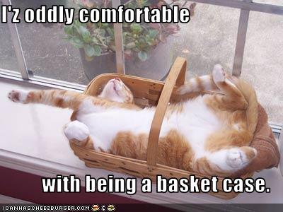 I'z oddly comfortable  with being a basket case.
