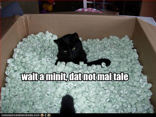 Mcat Funny
