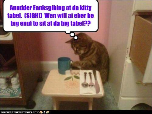 Thanksgiving funnies Bf41c803-9b60-4e51-a2fd-06452575ab92
