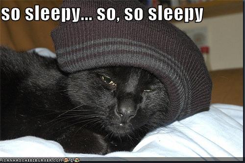 so sleepy... so, so sleepy