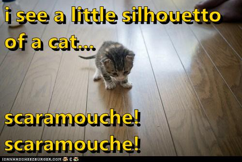 i see a little silhouetto                                         of a cat...  scaramouche! scaramouche!