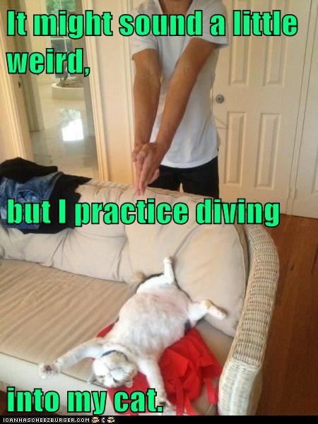 It might sound a little weird, but I practice diving into my cat.