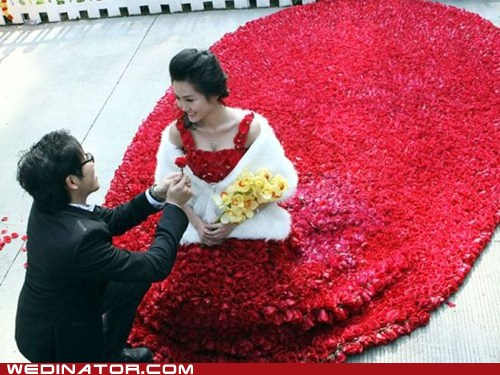 funny wedding photos roses gown