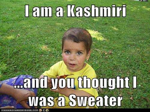 I am a Kashmiri  ...and you thought I was a Sweater