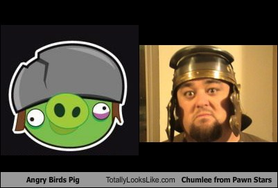 Angry Birds Pig Totally Looks Like Chumlee from Pawn Stars