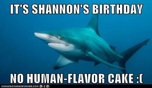 IT'S SHANNON'S BIRTHDAY  NO HUMAN-FLAVOR CAKE :(