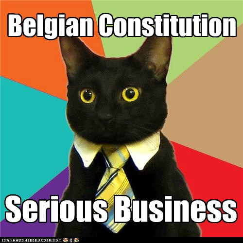 Belgian Constitution. Serious Business