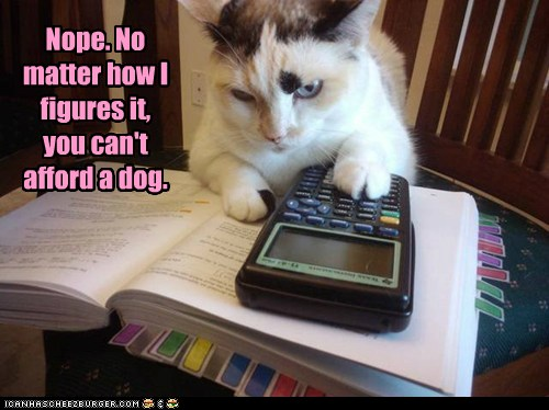 Nope. No matter how I figures it, you can't afford a dog.