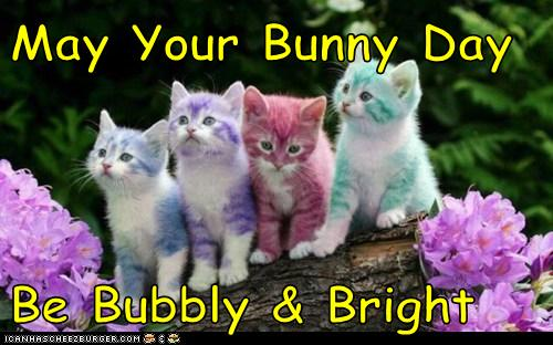 May Your Bunny Day  Be Bubbly & Bright