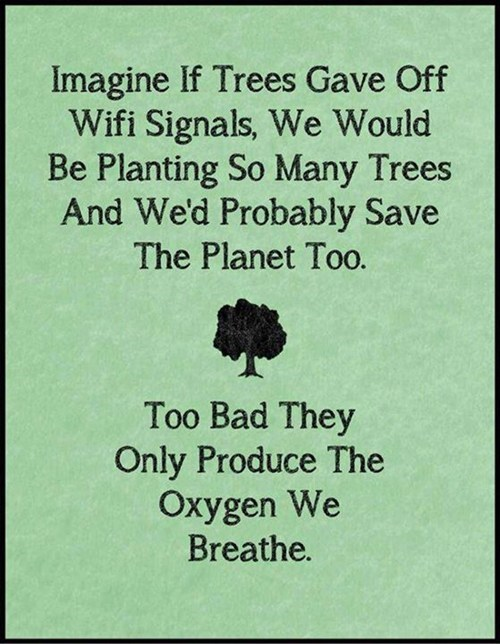 Imagine if trees gave off Wifi signals, we would be planting so many trees and we'd probably save the planet too. Too bad they only produce the oxygen we breathe.