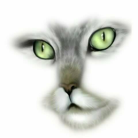 Avatar for catlovre2008