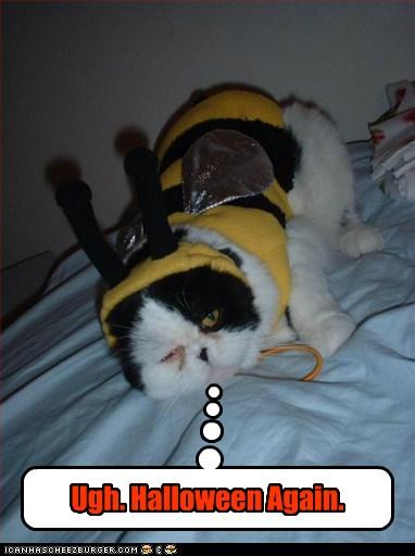 Ugh. Halloween Again.