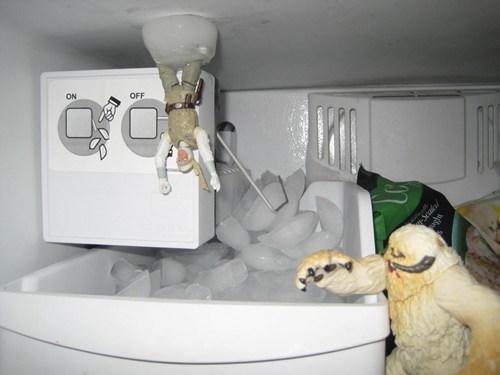 WIN!: Freezer Scene WIN