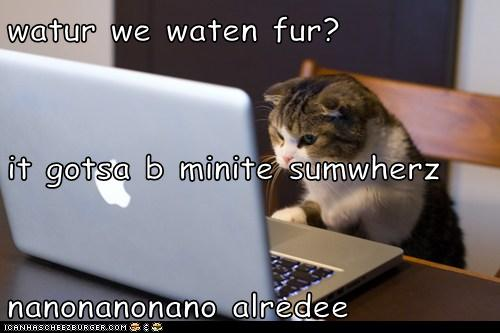 watur we waten fur? it gotsa b minite sumwherz nanonanonano alredee