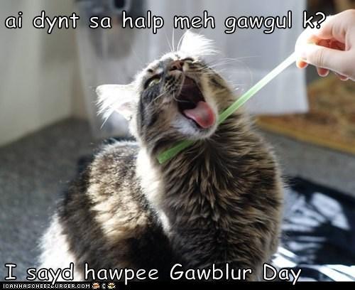 ai dynt sa halp meh gawgul k?  I sayd hawpee Gawblur Day