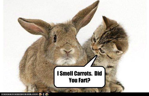 I Smell Carrots.  Did You Fart?