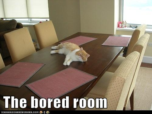 The bored room