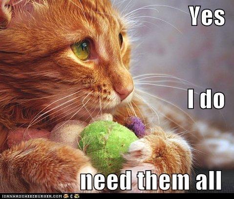 Lolcats: Classic LOLcat