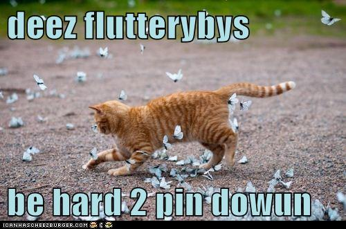 deez flutterybys  be hard 2 pin dowun