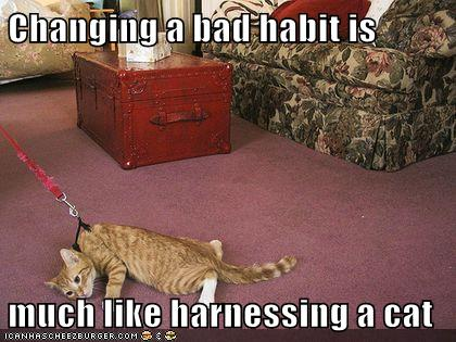 Changing a bad habit is  much like harnessing a cat