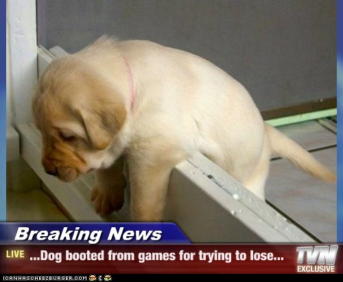 Breaking News - ...Dog booted from games for trying to lose...