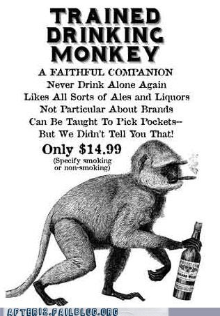 Everyone Needs a Drinking Monkey