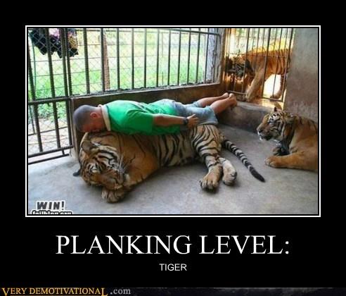 PLANKING LEVEL: