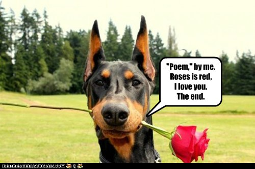Dog poetry gets right to the point...