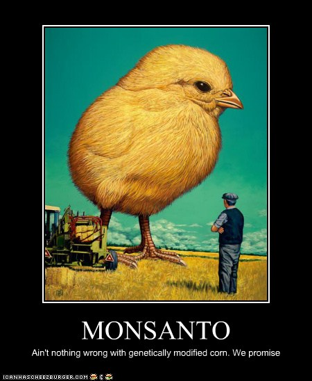 MONSANTO: Ain't nothing wrong with genetically modified corn. We promise. [giant chick towering over farmer]