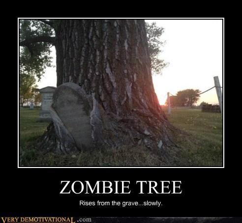 ZOMBIE TREE