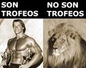 Lección del día a cargo de Arnold Schwarzenegger