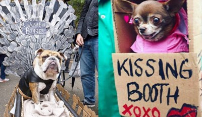 Here's Some of Our Favorite Costumes From the Annual Halloween Dog Parade in Tompkins Square Park